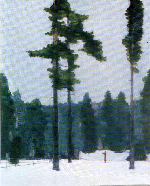 Нисский Георгий Григорьевич 1903-1987