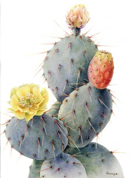 Выставка Цветочные брызги Ассоциации художников ботанического искусства (АХБИ) в Сочинском Художественном музее